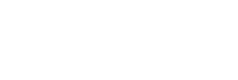 Castleoak_logo-white-temp